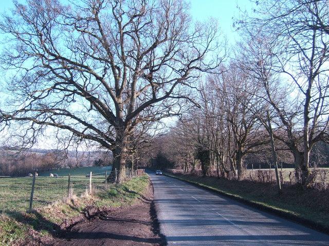 B2099 east of Ticehurst