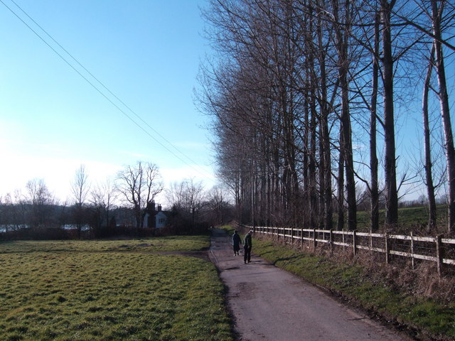 Dog-walkers on the Sussex Border Path