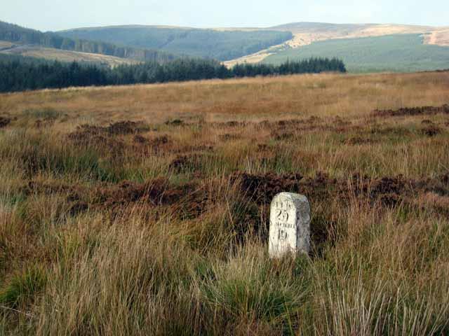 Milepost, moorland and forest near Waterhead on Minnoch