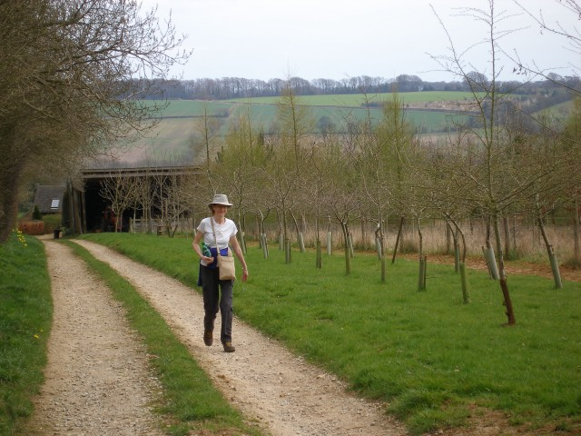 Footpath and new trees near Brighthill Farm
