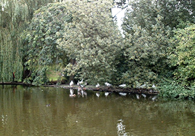 The duck pond, Southchurch Hall