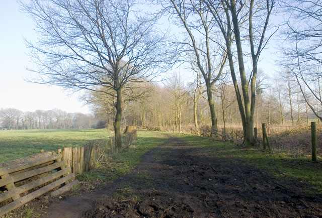 The Path to Peover Hall (2)