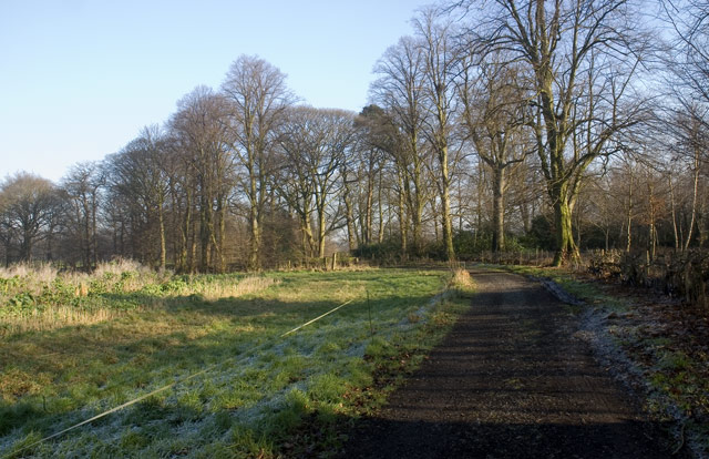 The Path to Peover Hall (3)