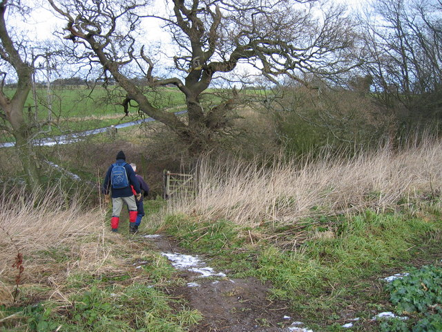 Footpath near Midge Park