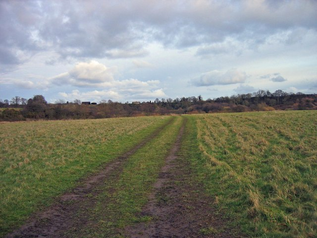 Footpath near the River Coquet