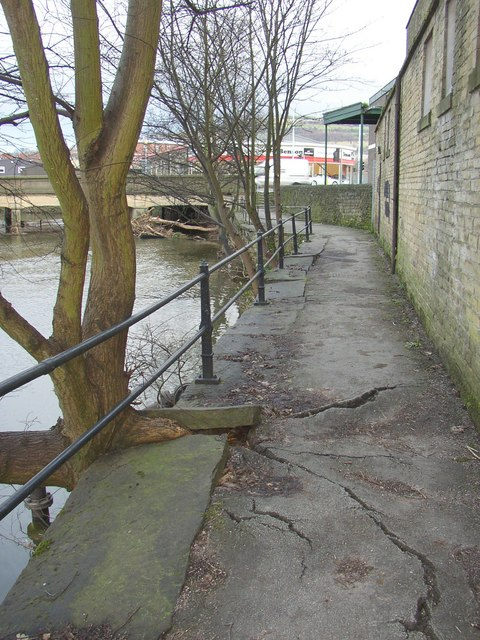 Damage caused by a tree, riverside footpath, Shipley