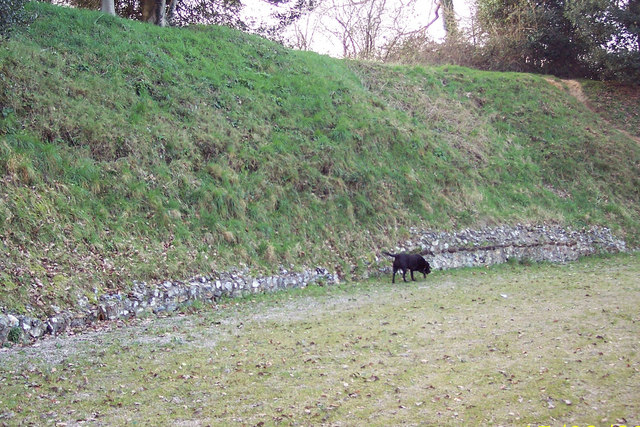 A Roman dog - no just Guinness!