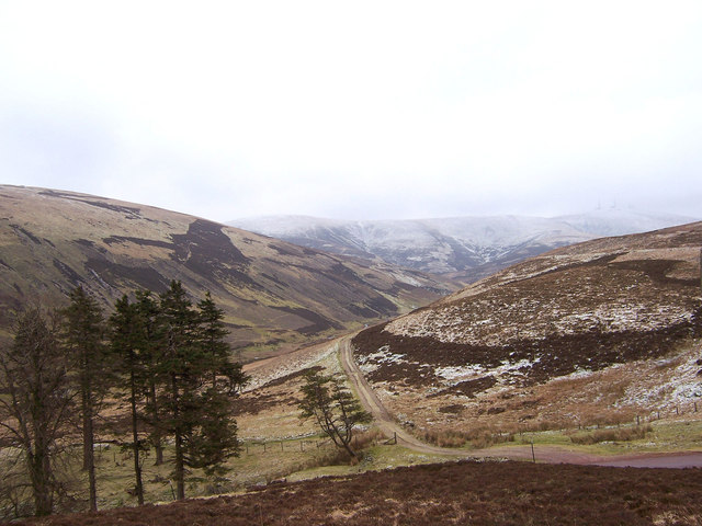 Looking up the track on the west side of Shortcleuch Water.