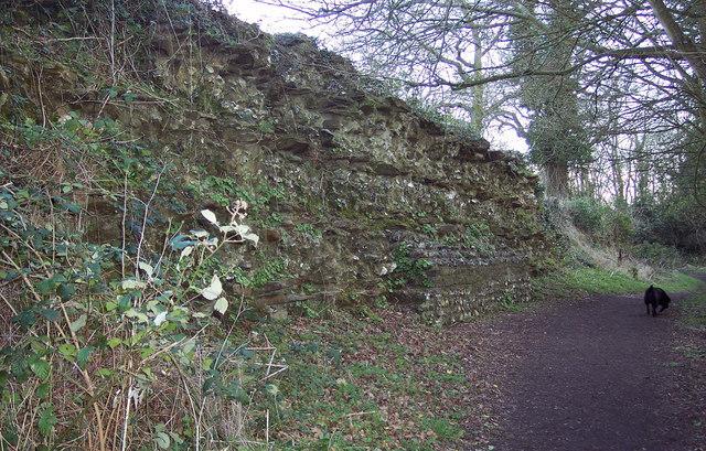 Wall at Calleva