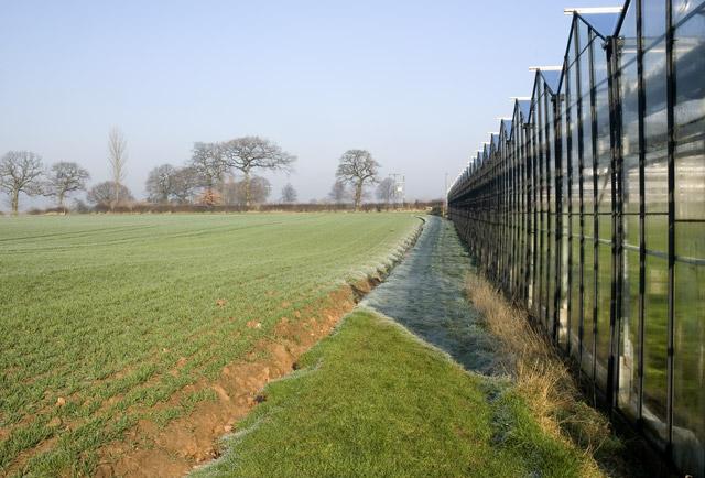 Footpath towards Longlane Farm