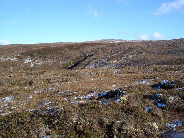 Moorland south of Peterburn