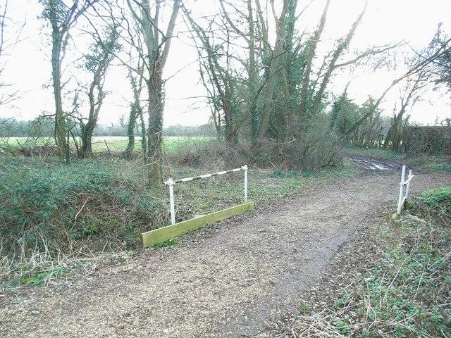 Prattle Lane