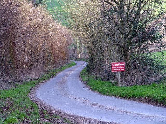 Lane to Gorcombe Farm