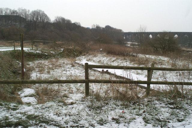Remains of Newton Common Lock