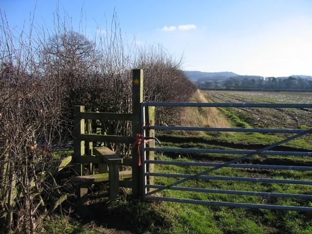 Footpath from Burwardsley Road to Dark Lane #5