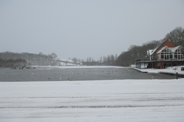 The lake 2007