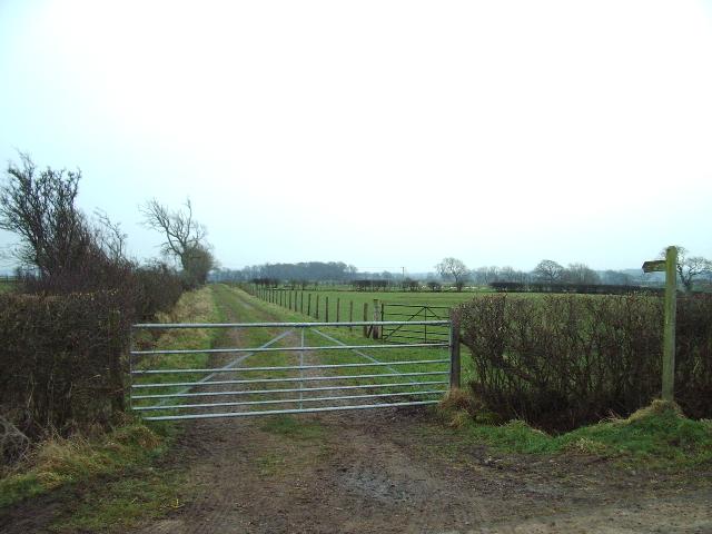 Footpath to Sceugh Dyke