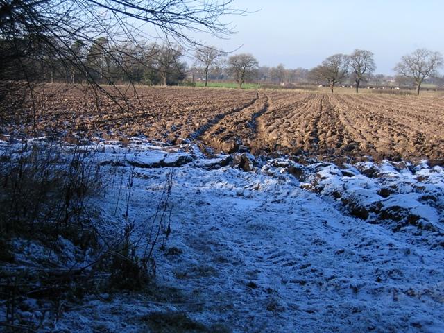 Footpath from Dark Lane to Burwardsley Road