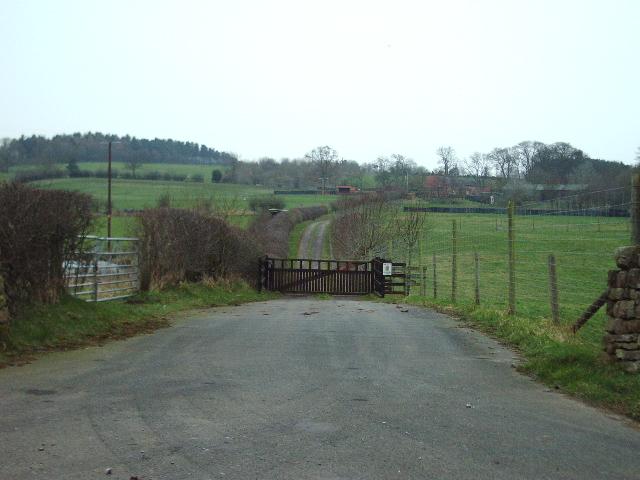The Road to Sceugh Mire Farm