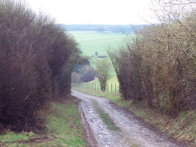 Track to Little Yews