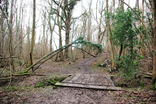 Footpath Bridge and Junction