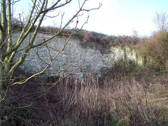 Disused Chalk Pit near Odstock
