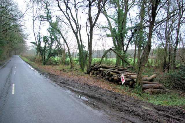 Jobson's Lane