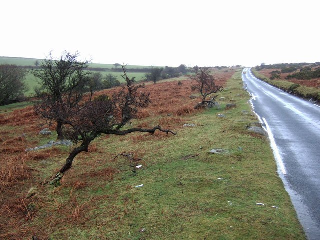 The road across Shaugh Moor