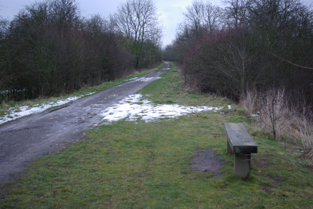 Brampton Valley Way, near Lamport