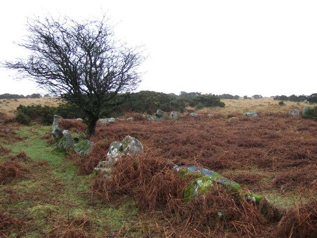 Homestead on Shaugh Moor