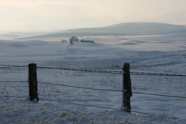 Moorland near Little Balloch Hill