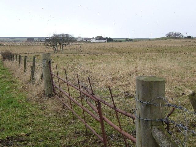 Gallowhills