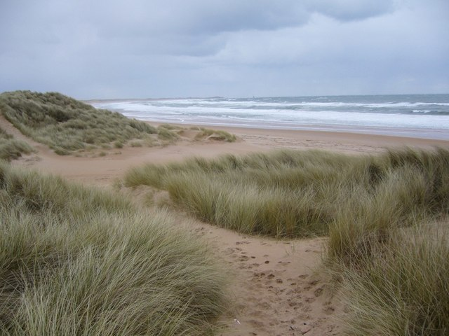 Sand dunes and beach at St Fergus Links