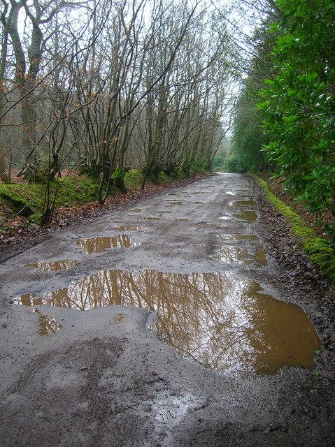 Bixley Lane