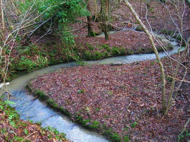 Eggshole Brook, Timber Wood
