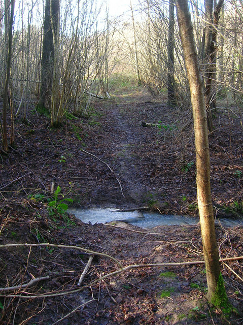 Unnamed Stream, Gate Shaw