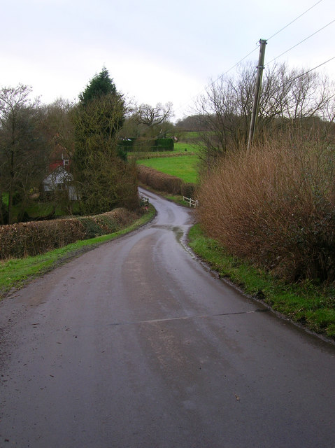Starvecrow Lane