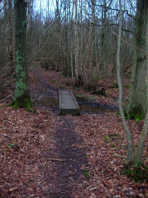 Footbridge, Mill Wood