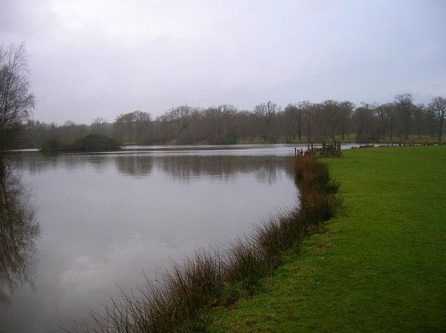 Decoy Pond