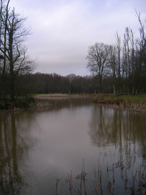 Unnamed Pond , Decoypond Wood