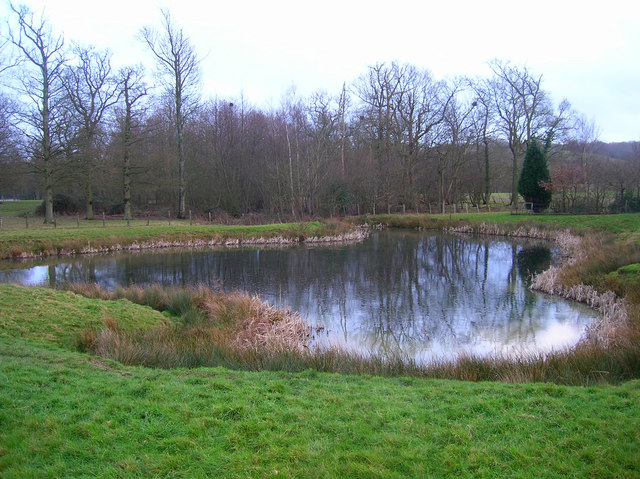 Unnamed Pond, Decoypond Wood
