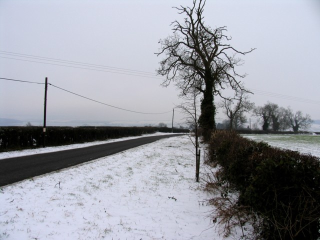 Road near to Stoke Dry