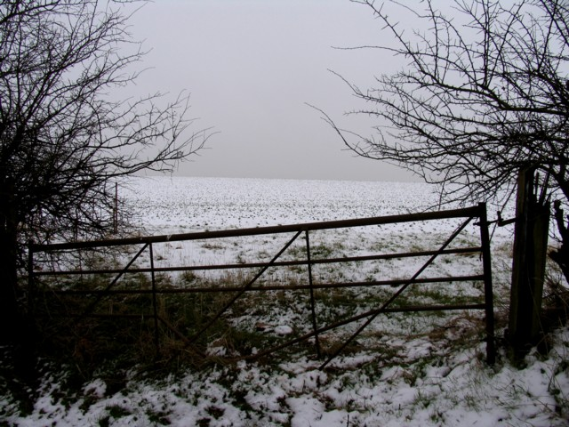 Snowy field north of Seaton Road