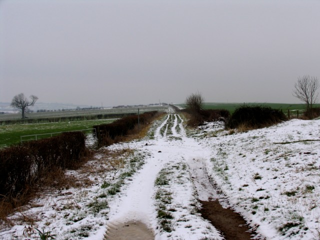 Muddy track covered with snow