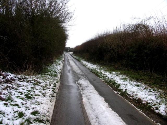 Moles Lane looking north towards Seaton