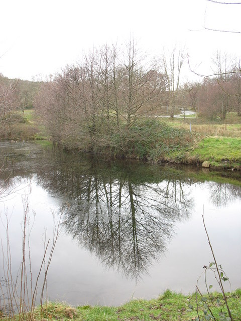 Part of Llyn Thomas Lewis at Gwarchodfa Natur Coed Doctor Nature Reserve, Llanberis