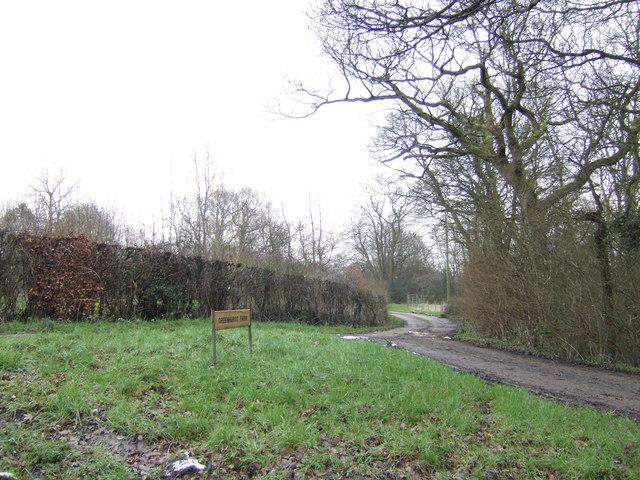 Road to Greenhurst Farm
