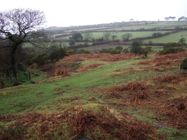 Edge of Shaugh Moor