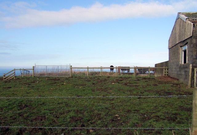 Clifftop farm