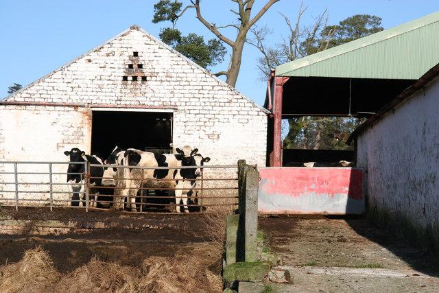 Dykeneuk Farm